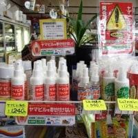 ヤマビル 忌避剤~子どもから大人向けまで   過疎に生きる・相模原市丹沢の麓 高城商店