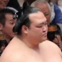 「白鵬と稀勢の里が5連勝!貴ノ岩、蒼国来、佐田の海も追走」とのニュースっす。