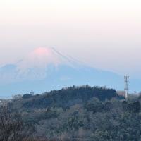 今朝の紅富士 2017.1.22.(日)