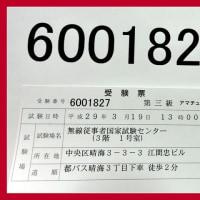 [晴海から有楽町駅まで ぷらぷら]