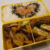 お弁当(肉団子&パプリカの山椒炒め)