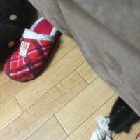 ソファの下