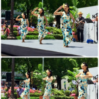 2017Hawaii festival NAGOYA (前半)