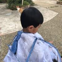 孫の髪をカット!