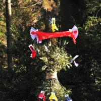 神楽場の一番高い所に飾られていたのは、相生(そうじょう)の飾り? (Photo No.14045)
