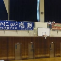 平成28年度西脇市中学校総合体育大会
