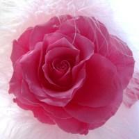 ローズ アニバーサリー  Rose  Anniversary