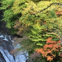 蓼科高原のホテルと 横谷峡紅葉