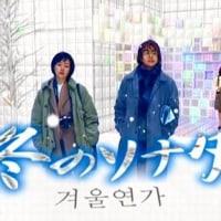 テレビ Vol.157 『アナザーストーリーズ 「冬のソナタ」』