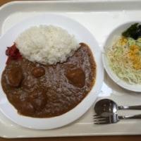 代表カレー食って福島第一原発、野馬追