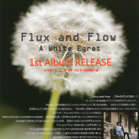 Flux and Flow 1st Album「A White Egret」 チラシ