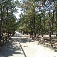 淡路島にツーリングに行ってきました(5月20日)