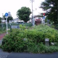 萩山一丁目 狭山自然公園