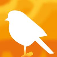 「青い小鳥」の描き方(雑記)