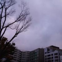 今日の私は795 【1月15日の博多の朝です】