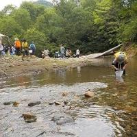 白神山地野遊楽校~水辺の生物を観察しよう~