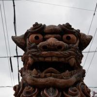 沖縄・ちるだい3月6日の朝の散歩は、いつもの壺屋界隈です〜写真23枚
