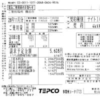 電気使用量と余剰購入電力量の精査「2016年11月分 ミニソーラー横浜青葉発電所」