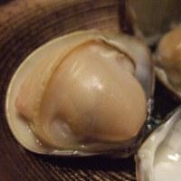 本日おすすめ カツオ、ハマグリ、旬の各種貝類