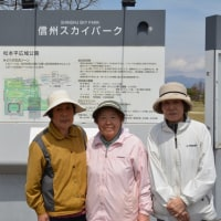 2017年4月22日 第2回塩尻MGナノハナ大会・・アルウィン