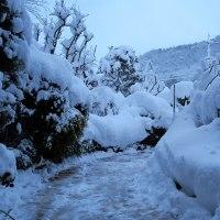 やっと治まった大雪しかし明日も続く