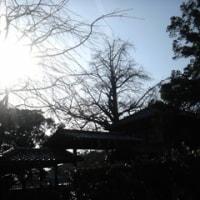 深田久弥 山の文化館へ