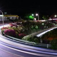 音戸大橋 つつじ 夜景