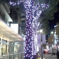 ダイエット再 388日目(11月15日)火@運動