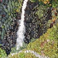 (779) 五色の滝