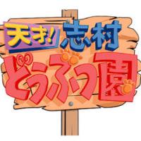 【バラエティー】『天才!志村どうぶつ園』2016.10.22-ゲスト:本田翼