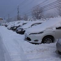 やっぱり雪の話題