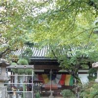「河内史跡巡り」長栄寺・河内西国観音三十三番札所・聖徳太子の開基と伝えられていますが、
