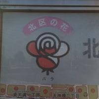 大阪24 〜区の花激写旅〜 2区目