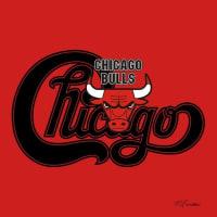 chicago bulls(chicago)