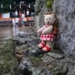「下鴨神社」の「みたらし祭」。30日まで。罪や穢れをみたらし池でお清め。朝がおすすめ