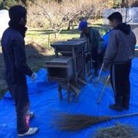 12月活動日レポート(12月11日)