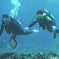初めてのダイビング
