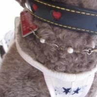 愛犬モコ狂犬病の予防注射へ