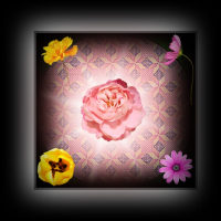 PhotoScape の学習