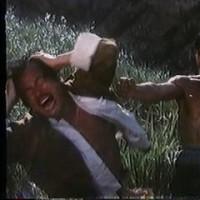 「ドラゴン荒野の猛殺」を観た