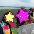 河口湖ラベンダー 大石公園