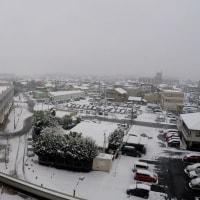茨城県水戸市2017年の雪景色・・