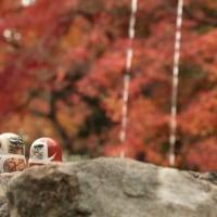 箕面 勝尾寺の紅葉