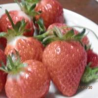 長女の誕生会・初イチゴ