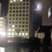 月とワンコは、無理ですね。   の巻