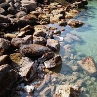 【初泳ぎは水温低くて心臓止まりそう!】
