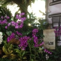 ある日のシンガポールの街の風景 パート547
