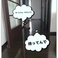 2676)小梅の・・・