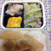 今週のお弁当 〜2017年の5-2