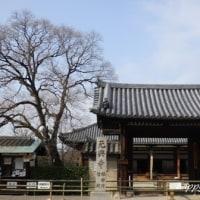 元興寺とならまち散策~♪